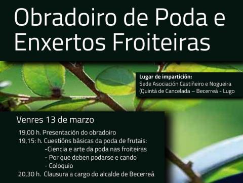 II OBRADOIDO DE PODA DE FRUTAIS EN QUINTÁ