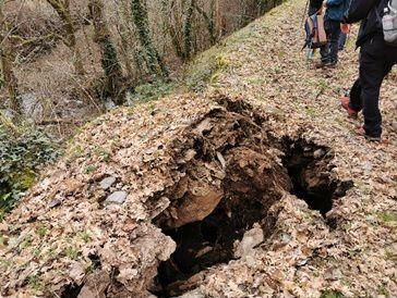 Eliminados los obstáculos y reparados los daños producidos por el temporal y el jabalí en la Ruta Quintá-Río Donsal