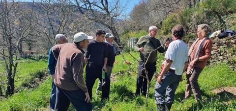 Participantes en un taller de poda de frutales en Cancelada concluyen que la formación es imprescindible para el emprendimiento rural