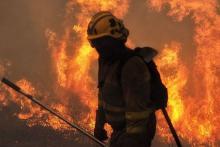 Nula acción en labores de prevención de incendios forestales de medio rural y gasto ilimitado en contratación de hidroaviones
